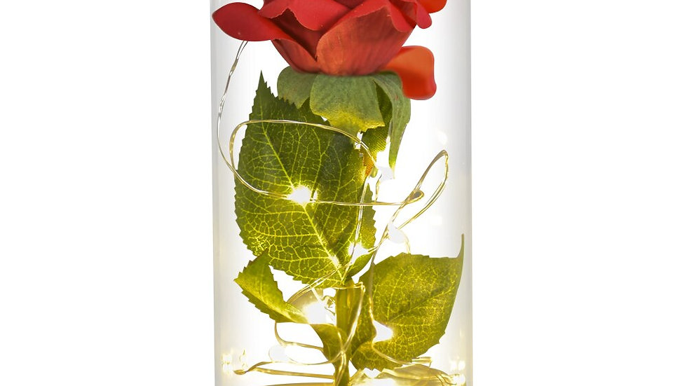 Beauty and the Beast Rose Flower in a Glass Dome With LED Light