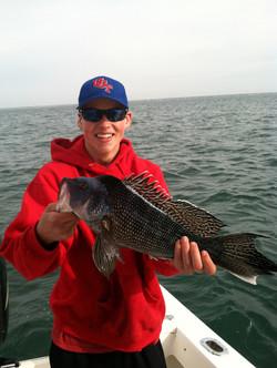 Cape Star Charters - Black Sea Bass