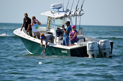 Cape Star Charters
