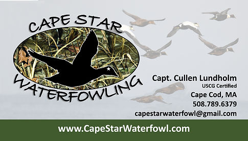 cape cod duck hunting