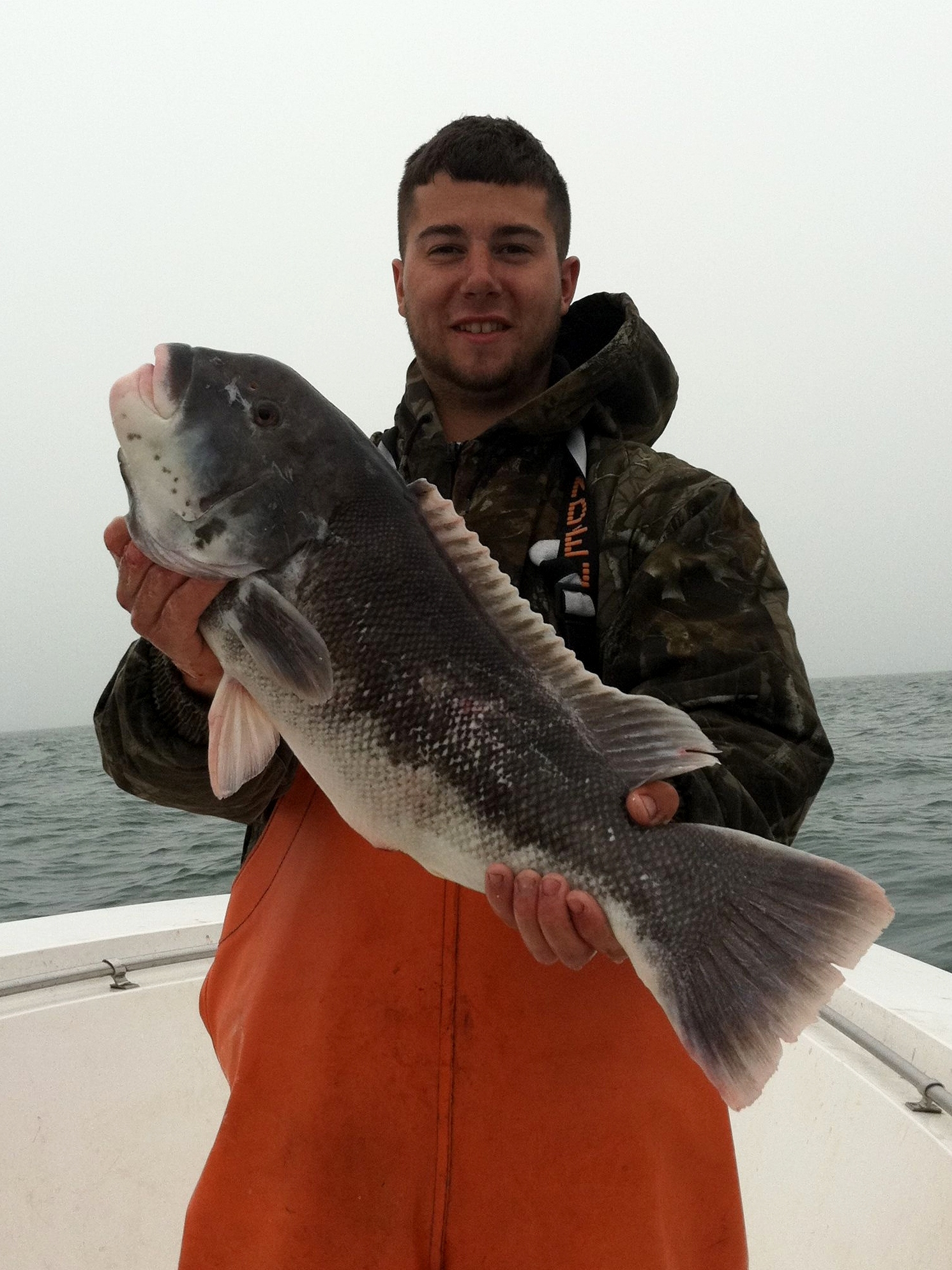 Cape Star Charters - Tautog