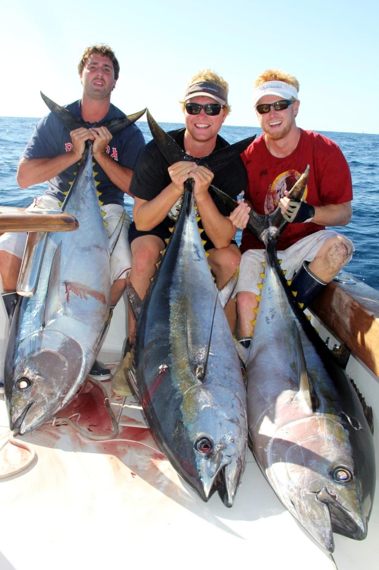 Cape Star Charters - Tuna