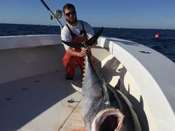 Tuna Fishing Cape Cod