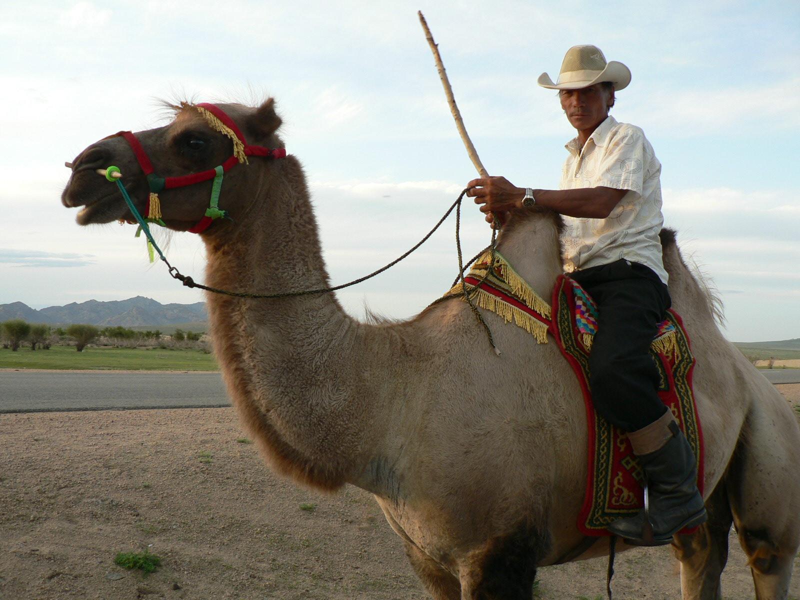 Le désert de Gobi