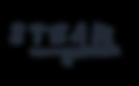 STEAM Logo Blue.png