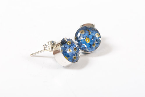 Forget Me Not Round Studs