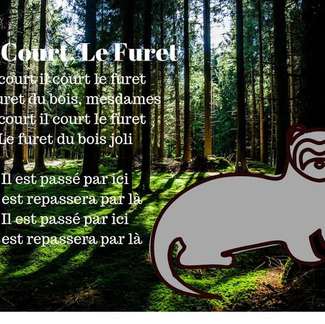 Il Court Le Furet.jpg