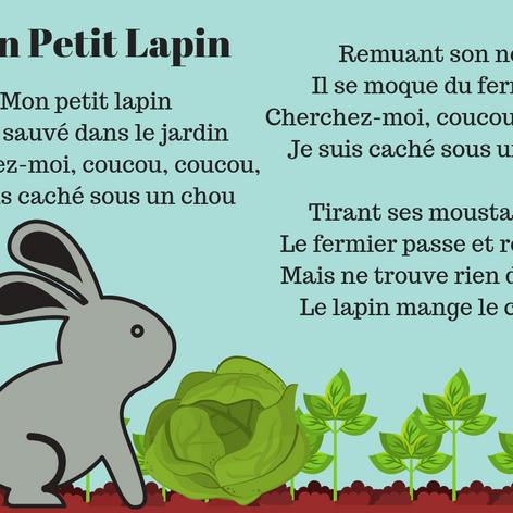 Mon Petit Lapin.png