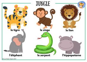 junglejpg.jpg