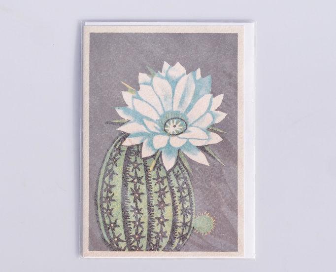 Greeting card - Elegance