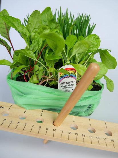'Grow it' Kids Box