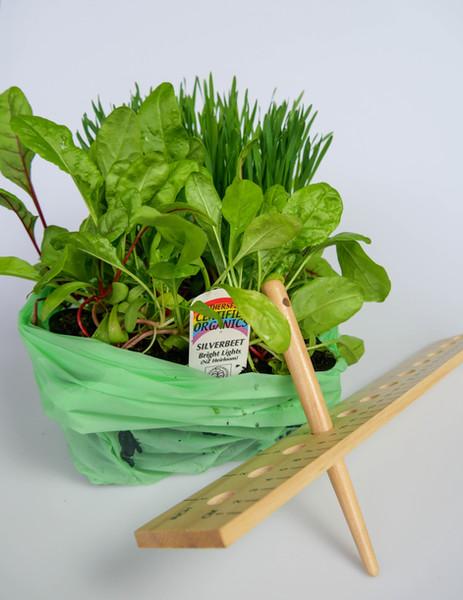 Grow it - box