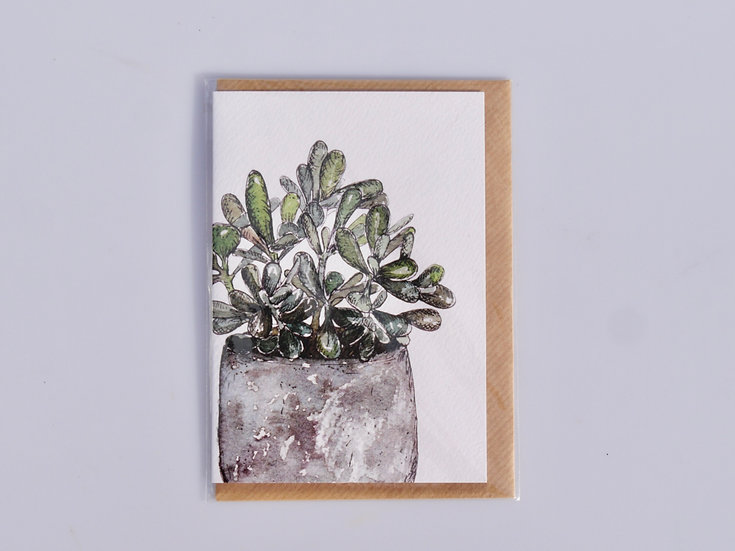 Greeting card - Succulent in pot