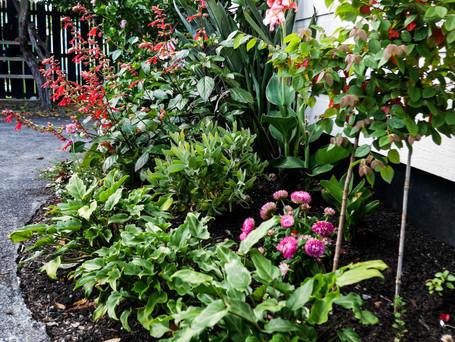 Tropical cottage fushion