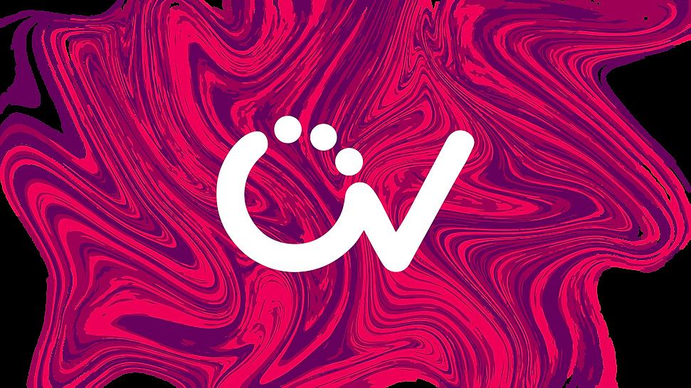 2020-Omni-Vision-Logo-LQ.png