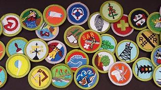 Merit-badges.jpg