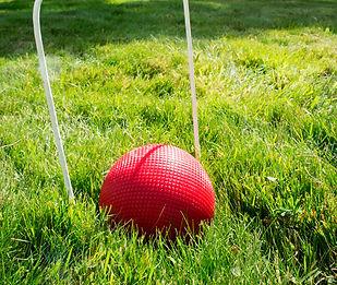ball+and+flag.jpg