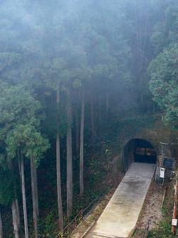 清幽的隧道