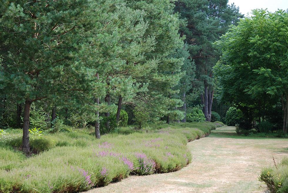 Arboretum_des_Grandes_Bruyères_2.JPG