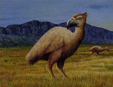Giant Bird II