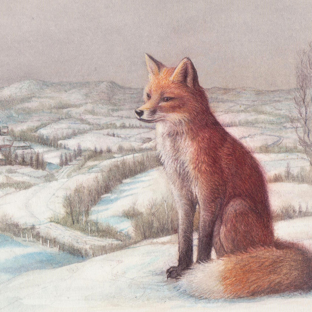 Fox in a Snowy Landscape