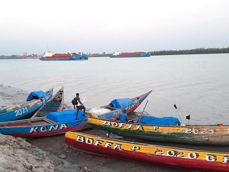 Guinée : Le littoral, un potentiel économique et écologique, menacé de toute part