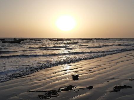 Le littoral guinéen est menacé par des grands projets de développement