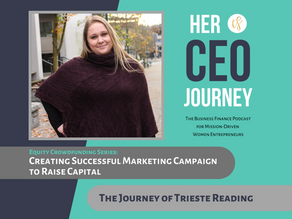 Creating Successful Marketing Campaign to Raise Capital - The Journey of Trieste Reading