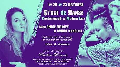 Stage de Danse Octobre 2020.png