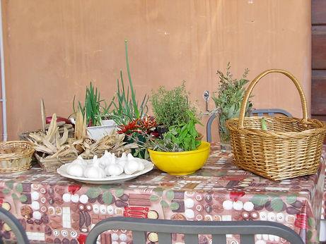 039-herbs.JPG