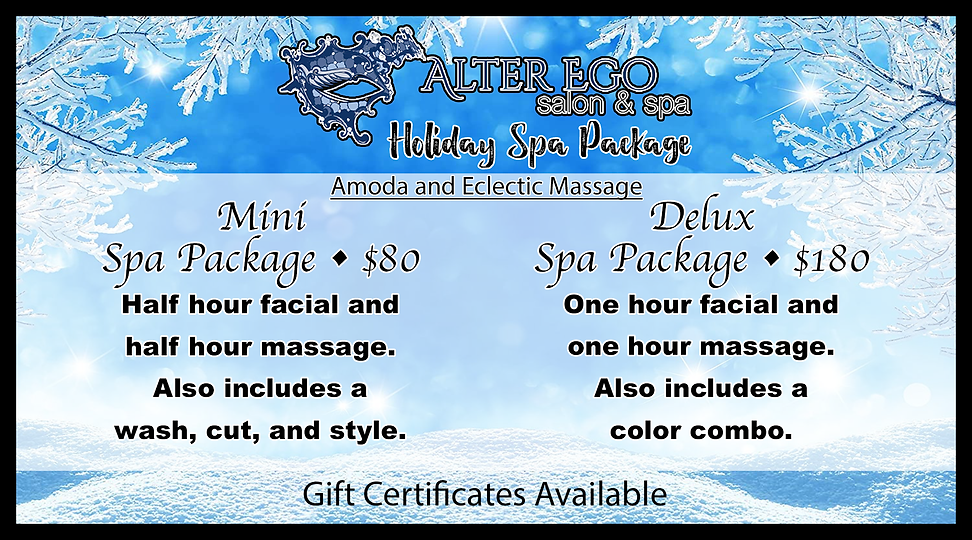 AE Holiday Ad copy.png
