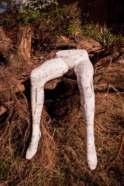 birch legs