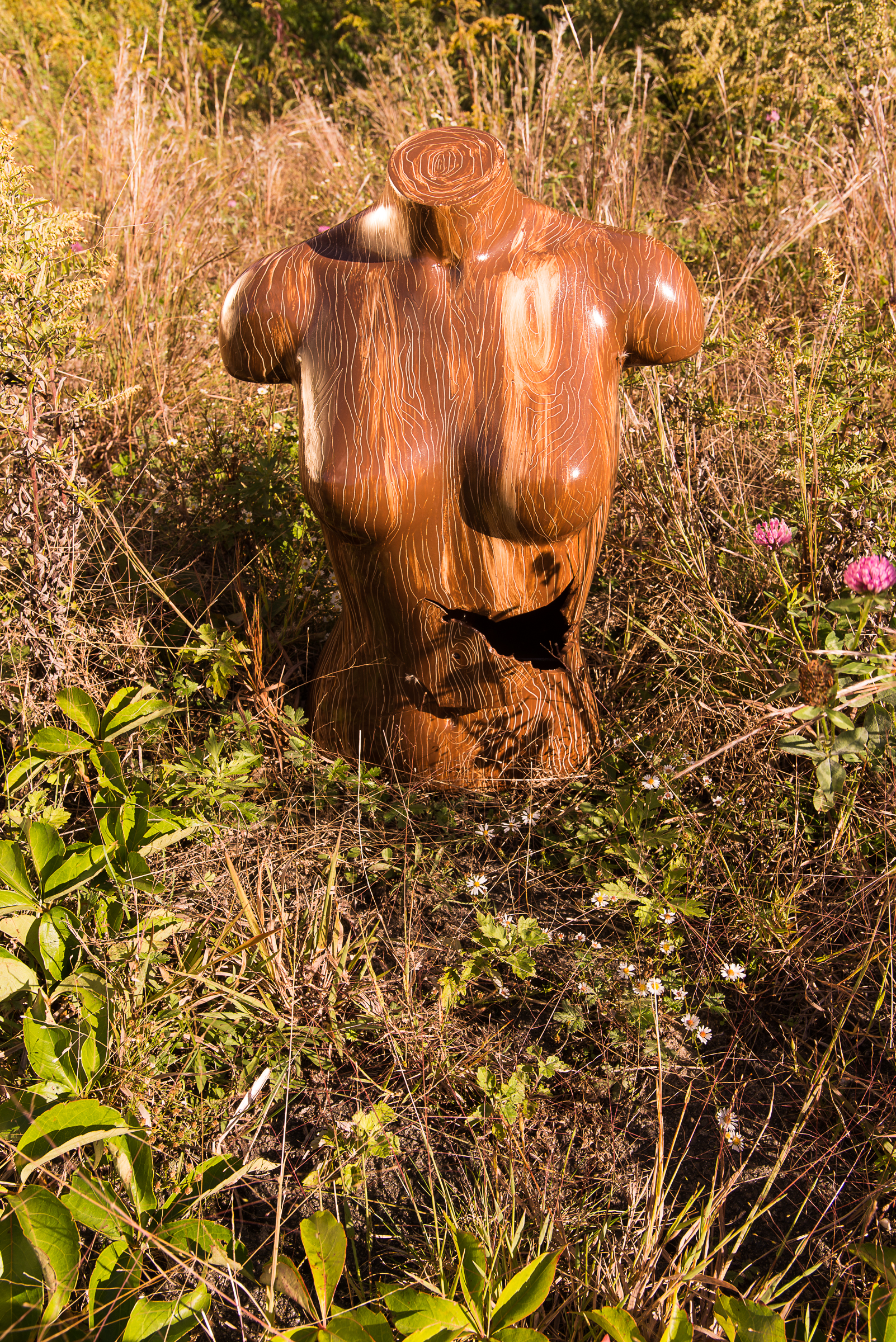 walnut torso