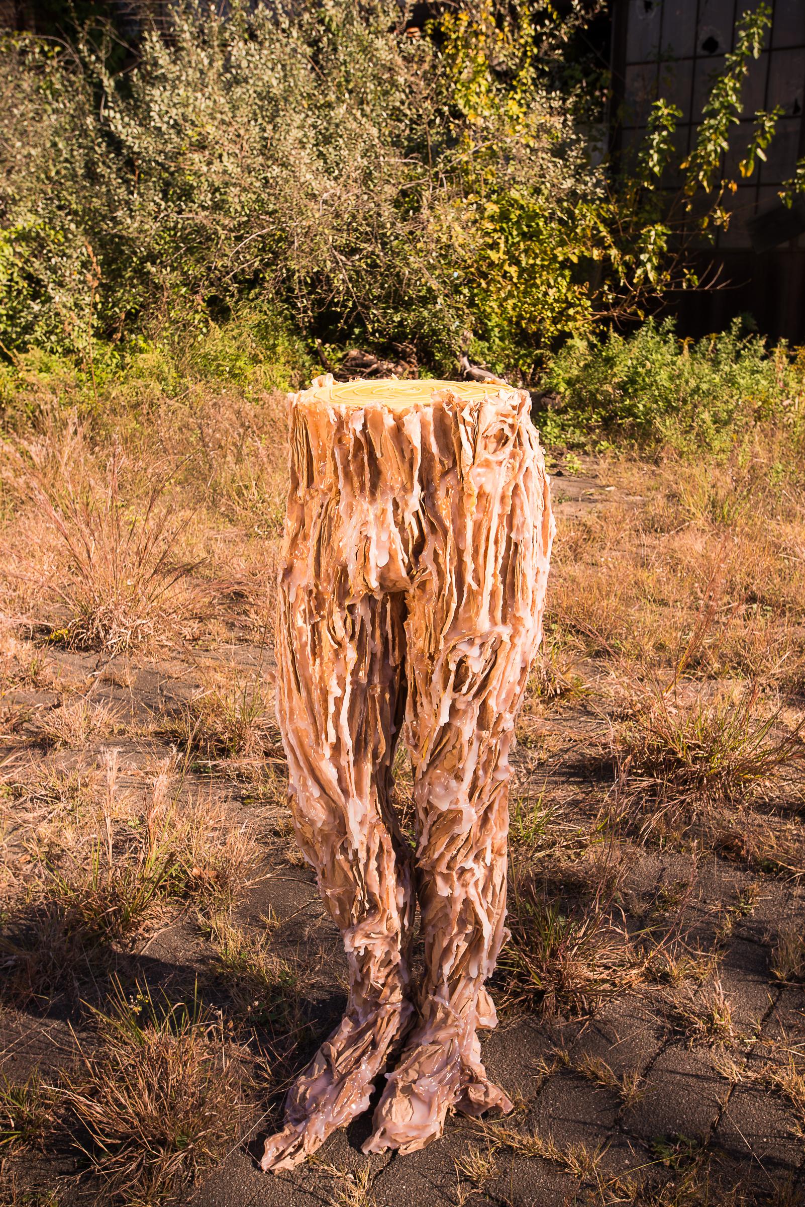 sequoia legs