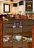 DBTA Focus on India Newsletter.jpg