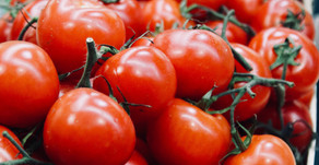 Our Favorite Summertime Treat: Tomato Salad!