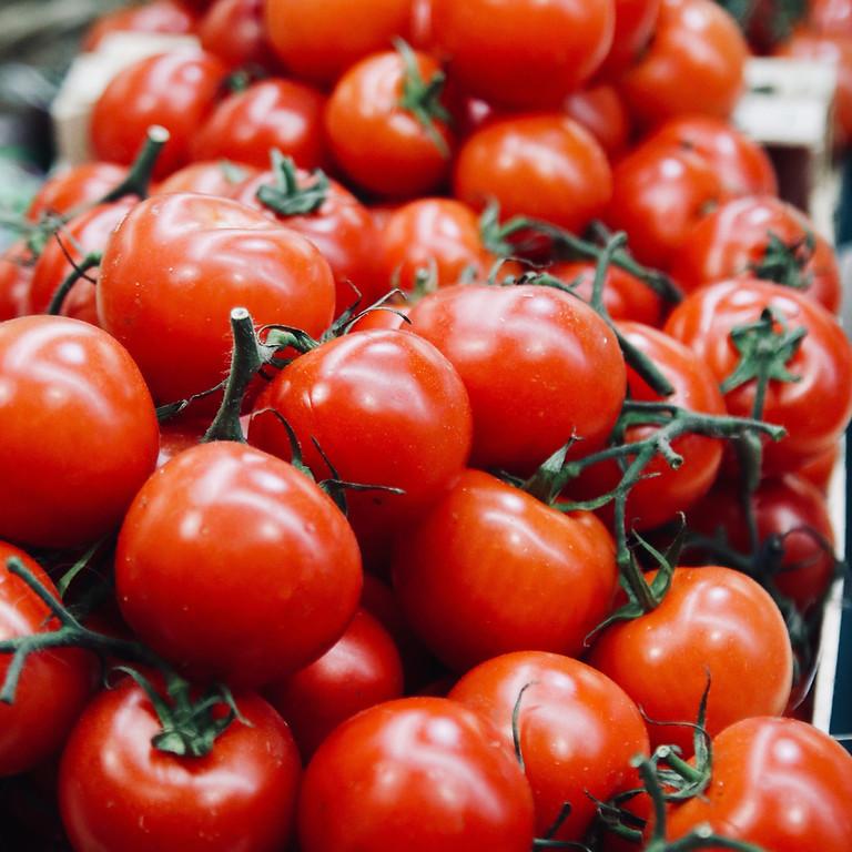 Pittston Tomato Festival