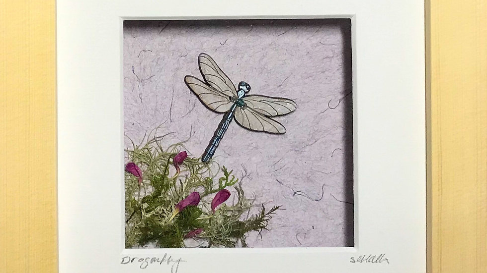 Small Boxed Picture Dragonfly