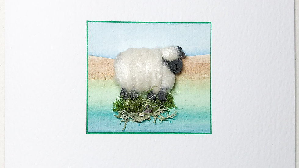 Card/Brooch Card Woolly  Sheep