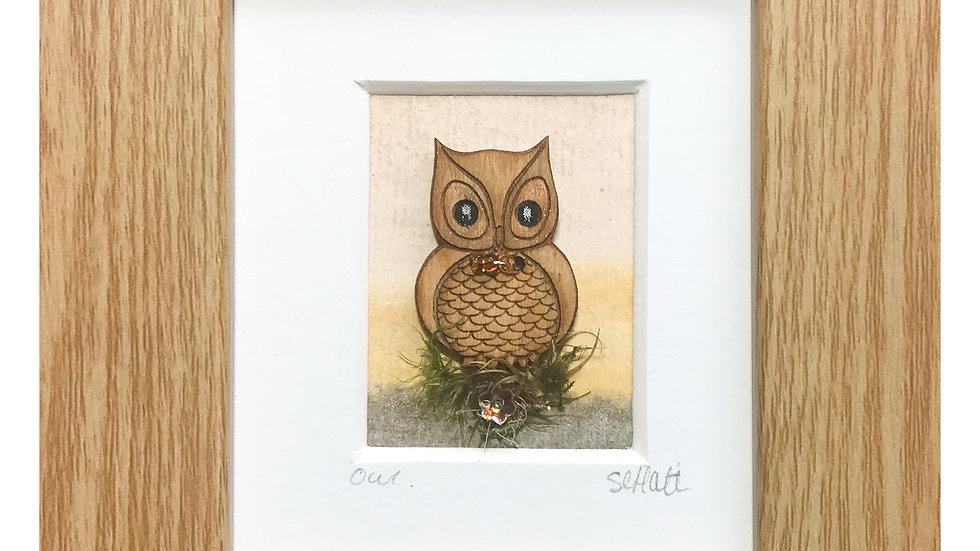 Wide Eyed Owl Mini Boxed Picture