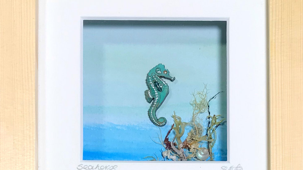 Small Boxed Picture Seahorse