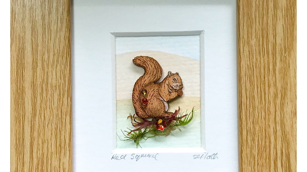 Red Squirrel Mini Boxed Picture
