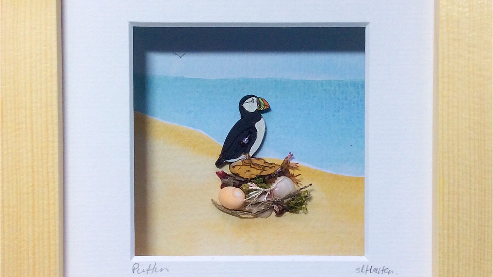 Small Boxed Picture Puffin