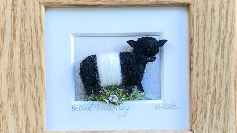 Wool Wrapped Belted Galloway Watercolour Mini Boxed Pictures