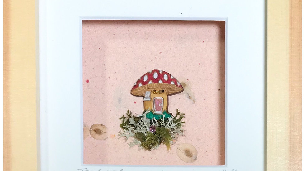 Small Boxed Picture Toadstool