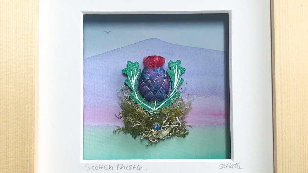 Small Boxed Picture Scottish Thistle