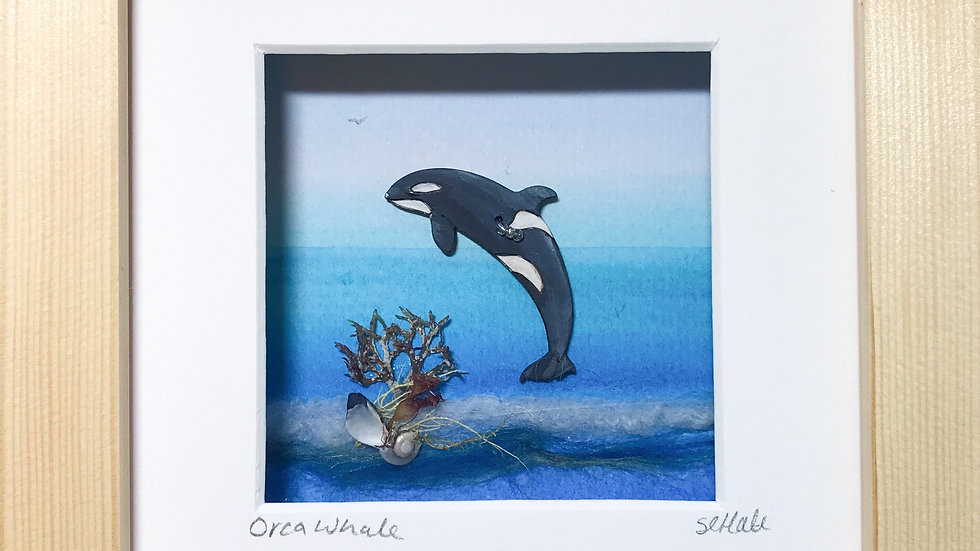 Small Boxed Picture Orca Whale