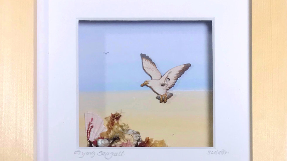 Small Boxed Picture Flying Seagull