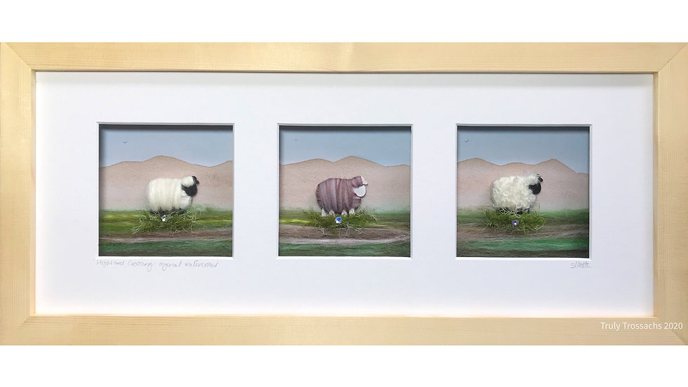 Long Triple Window Boxed Picture Woolly Sheep