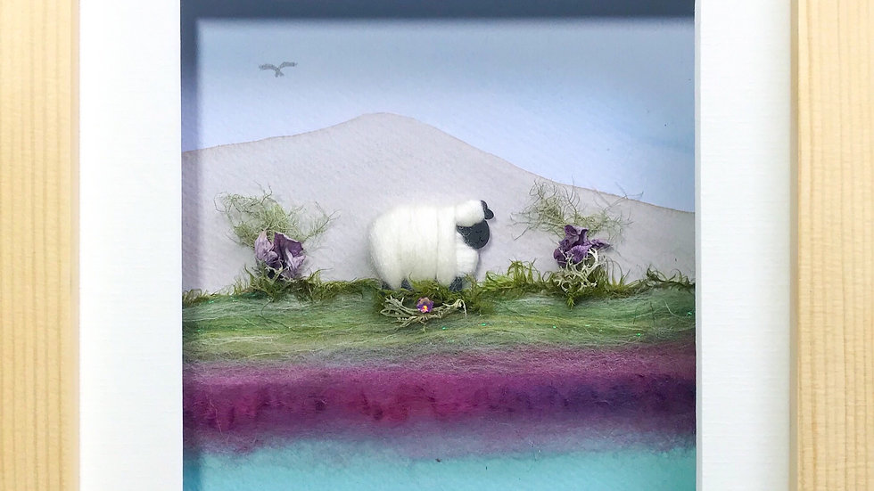 Medium Boxed Picture Woolly Sheep